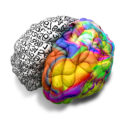 Brain with a brightly coloured right hemisphere and a left hemisphere covered in numbers